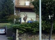 ciervo-balcon