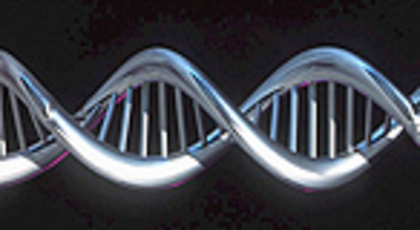 Recreaci�n inform�tica del genoma humano.
