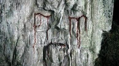 Historias de 'Juego de tronos' (20): Hijos del bosque