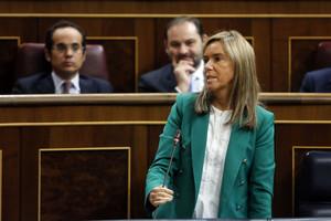 Ana Mato, durant la sessió de control al Govern, aquest dimecres al Congrés.