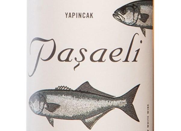 Pasaeli, el renaixement de Turquia
