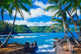 Islas tropicales para visitar durante todo el a�o