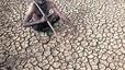 L'Índia es mor de calor