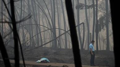 Varios fallecidos fueron sorprendidos por las llamas en el interior de sus vehículos