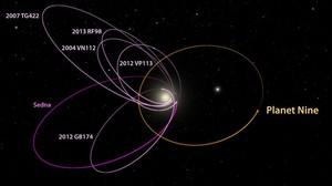 Orbita estimada del supuesto planeta nueve o noveno planeta del sistema solar, junto a la de otros objetos del cinturon de Kuiper.
