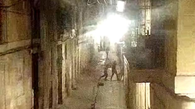 Vídeo: violenta baralla davant de la narcofinca del Raval