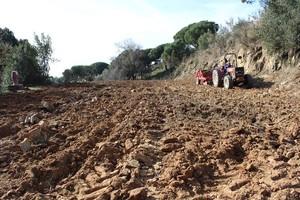 Imagen del terreno que es está acondicionando en el Recinto Torribera.