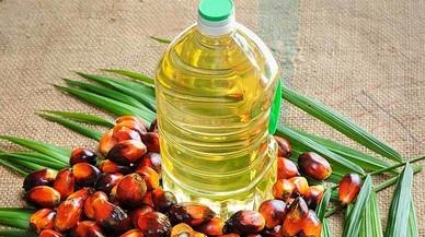 ¿Qué es el aceite de palma? ¿Es malo para la salud? 5 claves