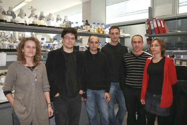 Científicos de la Pompeu crean un sistema celular vivo capaz de tomar decisiones complejas
