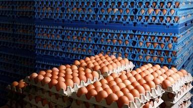 La alerta de los huevos contaminados afecta a 16 países europeos y a Hong Kong