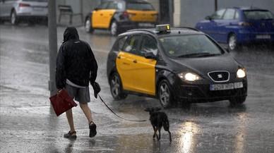 La pluja arriba a Catalunya