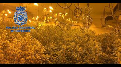 Detinguts 24 narcos que enviaven marihuana al Regne Unit camuflada en lloses de marbre