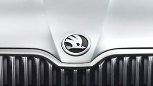 skoda-emblem-2