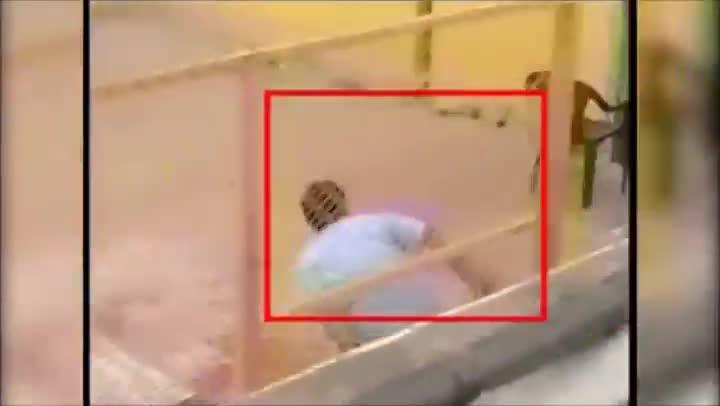 Un leopardo deja seis heridos al colarse en un colegio�en Bangalore (India).