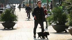 La foto de David Carab�n paseando a su perro se viraliza