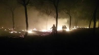 Bomberos intentan controlar las llamas del incendio que se ha adentrado este domingo en el parque natural de Doñana.