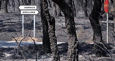 Paisaje calcinado entre Darnius y Agullana. RIBOT / ICONNA
