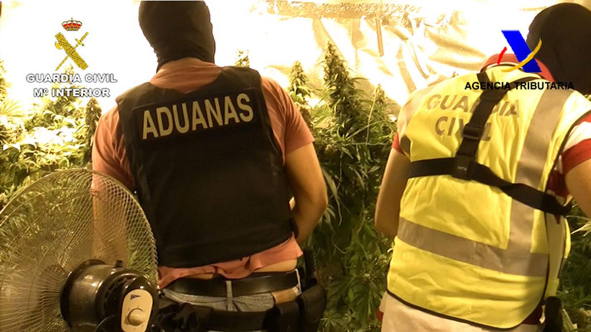 Detienen a 51 personas en Granada de una red de narcotráfico
