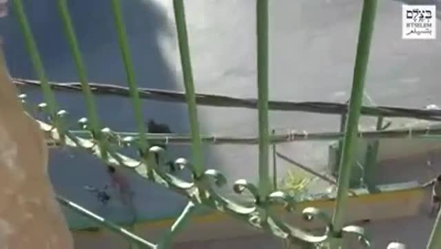 Policies israelians arrabassen amb violència la bicicleta a una nena palestina de 8 anys