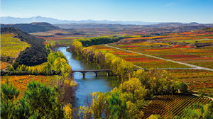 Paisaje otoñal de Baños de Ebro, en el término de la Denominación de Origen Calificada Rioja