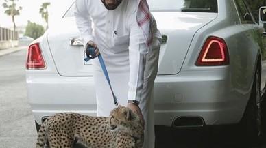 Lujo, armas y animales exóticos: Los 'niños pijos' de Arabia Saudí se pavonean en Instagram