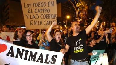 El Constitucional anula el veto a los toros en Catalunya