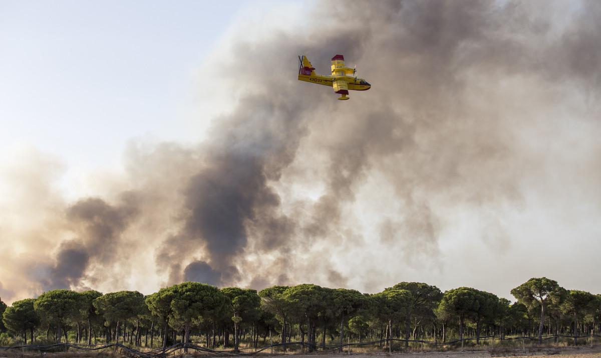 Una avioneta participa este domingo en las labores de extinción del incendio de Huelva.