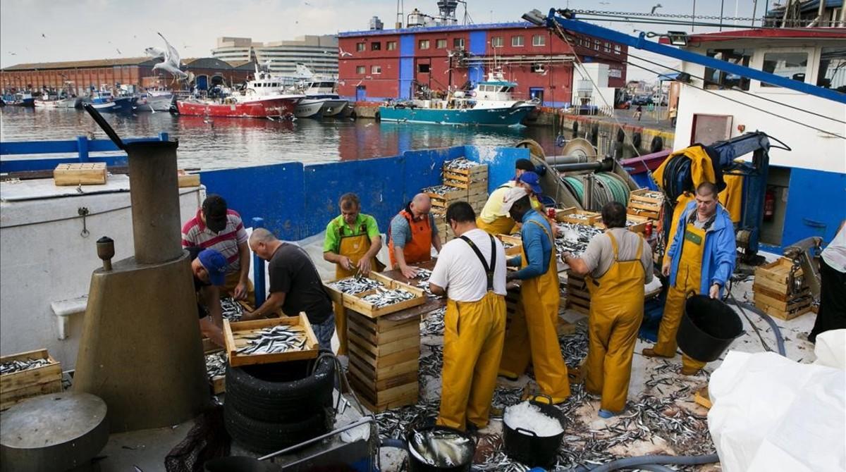 El Mediterrani es queda sense peixos