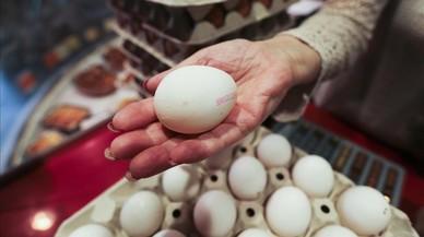 Francia teme que haya más huevos contaminados sin retirar