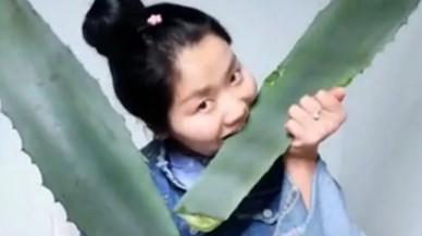 Una bloguera china se intoxica en directo al ingerir una planta venenosa