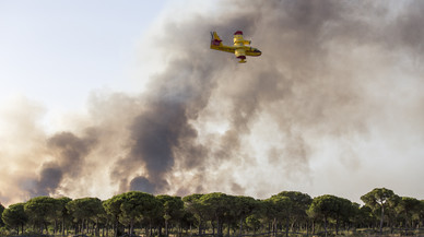 Una avioneta participa este domingo en las labores de extinción del incendio.
