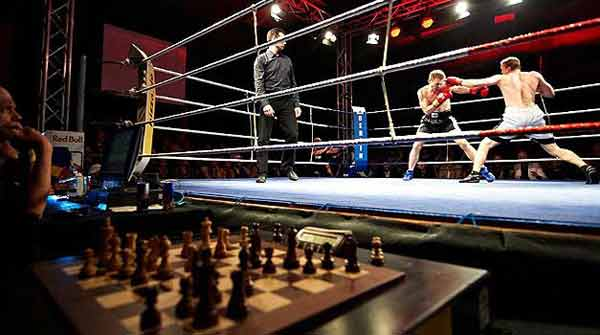 captulos-chessboxing