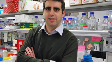 El investigador de Sant Boi, Manel Esteller. FOTO: SBN.