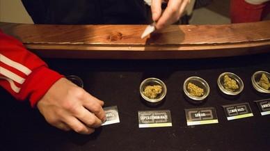 Girona limita el consumo en los clubs de cannabis a tres gramos diarios