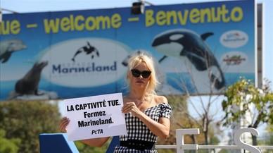 Pamela Anderson l'emprèn contra Marinelad