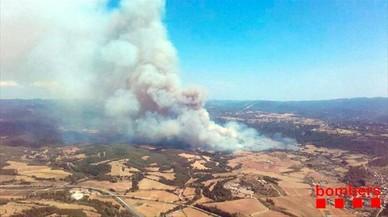 Los bosques de Catalunya capean el verano de alto riesgo