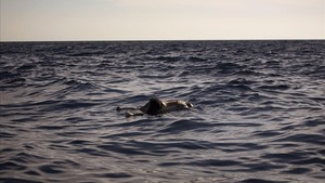mbenach39691558 the dead body of a woman is seen floating on the mediterrane170814203302