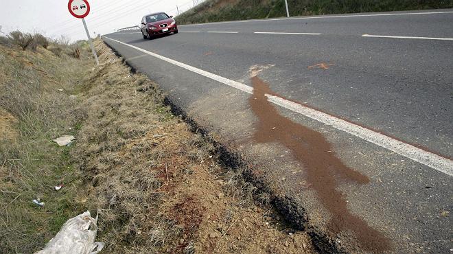 Tres menores fallecidas al ser atropelladas por un turismo en la carretera que une Torrijos y Fuensalida.