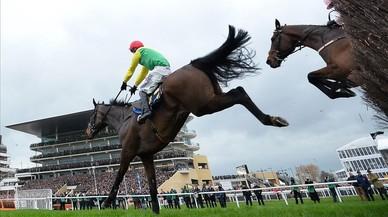 Una aldea irlandesa recibe a un caballo como un héroe