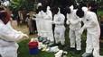 Una vacuna experimental contra l'Ebola supera amb èxit la primera prova en humans