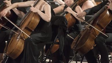 Un gos es cola en un concert a Turquia i eclipsa l'orquestra