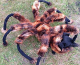 Bromas en las que el perro disfrazado de ara�a gigante asusta gente.�