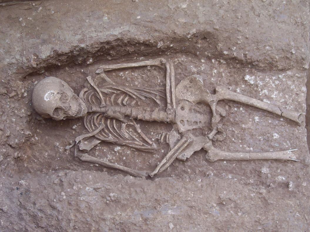 esqueleto romano torre sagrera