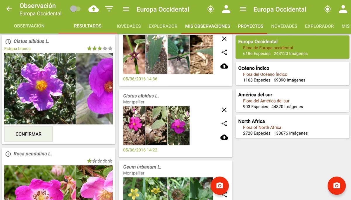 La aplicación Plantnet.