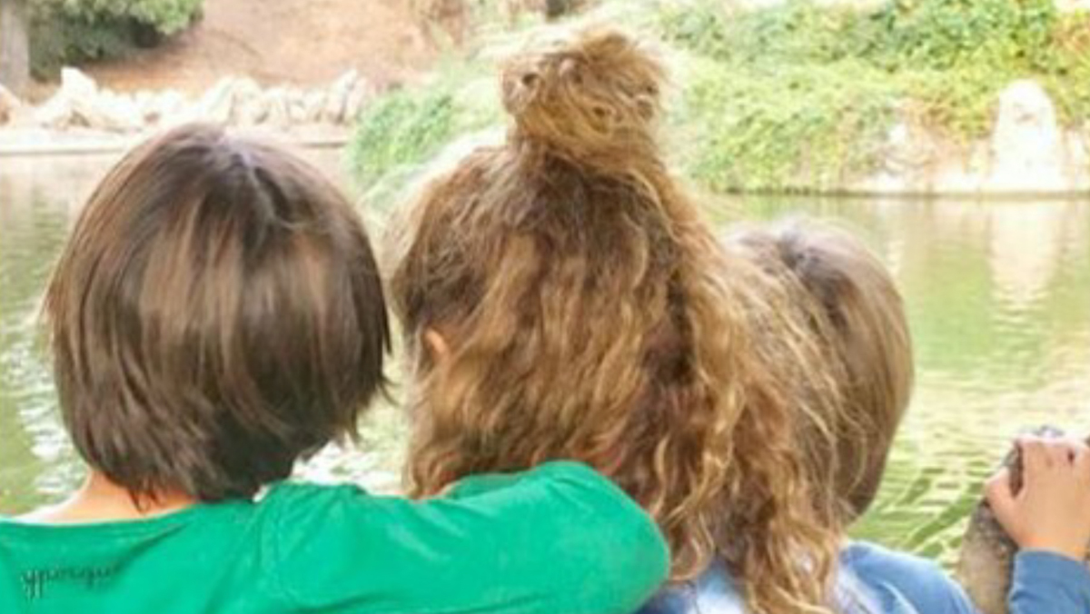 Shakira i Piqué, dia en família i res de crisi