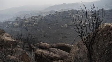 DIRECTE: La pluja arriba a Galícia després de l'onada d'incendis que han causat tres morts