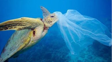 Imagen de la campa�a de Greenpeace contra el vertido de pl�sticos en el mar.