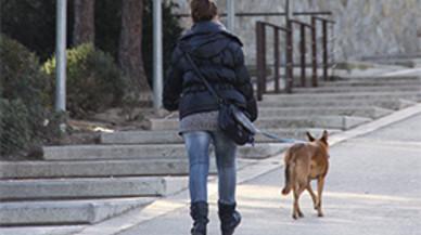 L'Ajuntament de Sant Boi contracta 70 persones amb dificultats d'inserció laboral