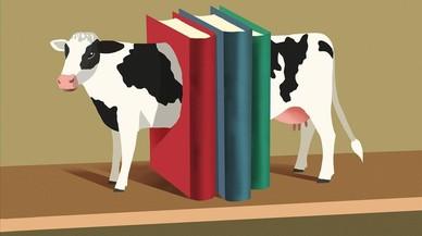 La vaca en la feria de la leche