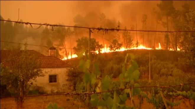 Continúa activo el peor incendio de la historia reciente de Portugal